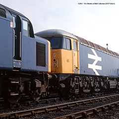 06/09/1981 - Doncaster (DR) TMD. (53A Models) Tags: train diesel dr railway britishrail doncaster southyorkshire class56 class40 40177 56027