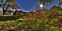 fall on the farm (JoelDeluxe) Tags: autumn red brown newmexico fall colors yellow nm joeldeluxe hdr southvalley
