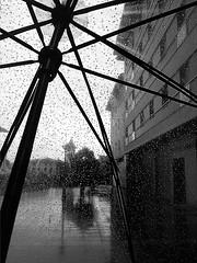 temporada de paraguas (ines valor) Tags: bw lluvia gotas paraguas otoa