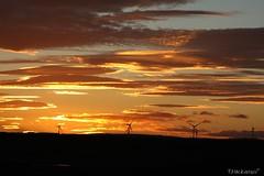 Aberdeenshire Coastlines (phillmackenzie) Tags: aberdeenshire ruralaberdeenshire uploaded:by=flickrmobile flickriosapp:filter=nofilter