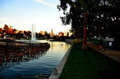 Lake & City (Pedestrian Photographer) Tags: california park ca flowers trees sky lake fountain los downtown december lotus angeles path echo dec southern trail socal dtla 2013 dsc8242b