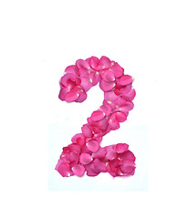 number (ARZTSAMUI) Tags: pink flowers roses plants color texture love nature floral beautiful beauty rose garden idea petals perfume symbol blossom anniversary character over decoration valentine advertisement communication number fantasy passion font romantic florist write alphabet create blooms language bridal numeral botany lead darling learn aroma