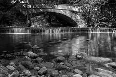 Near Mitford Village (Callaghan69) Tags: uk bridge blackandwhite bw reflections river mono countryside rocks northumberland mitford northeastengland riverwansbeck d3100 wildaboutnorthumberland
