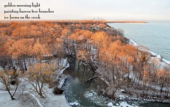 Winter View (Don Iannone) Tags: trees winter poetry poem lakeerie haiku downtowncleveland imagepoetry bratenahlohio