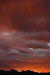 Sunset 2 25 2014 #08 (Az Skies Photography) Tags: sunset red sky orange cloud sun black rio yellow set skyline clouds canon skyscape eos rebel gold twilight dusk salmon az rico 25 februrary nightfall 2014 arizonasky arizonasunset 22514 rioricoaz goldent t2i ariozna arizonaskyline canoneosrebelt2i eosrebelt2i arizonaskyscape february252014 2252014