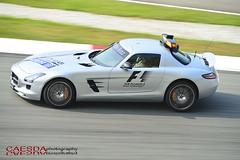 Petronas Malaysia GP 2014_001 (Caesda) Tags: race speed petronas grandprix malaysia sepang 2014 caesda