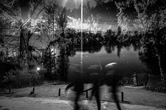 Night_Walk (Olivier Moges) Tags: forestofbroceliandeseries night walk blackwhite blackwite dark doubleexposure doubleexposition daumesnillake experimentation hicontrast wizardy magie monochrom noirblanc noiretblanc nature oliviermoges oliviermogès ombres multipleexposures shadows shading tree
