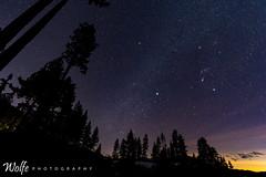 towering trees (Aaron_Smith_Wolfe_Photography) Tags: stars night laketahoe sandharbor trees nevada mountain