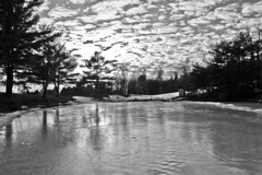 Bumps in the Sky, Bumps on the Ice (brucetopher) Tags: ice frozen pond freezing cold winter freeze icy clouds bright evening sunset reflect reflecting reflection water lake trees shadow silhouette black white blackandwhite bw blackwhite monochrome contrast tone tones 7dwf