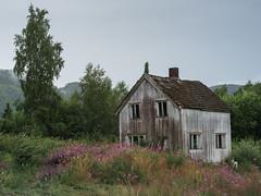 Abandoned house (Helena Normark - Away) Tags: desertedhouse abandonedhouse decayinghouse myrmoen nordtrøndelag norway norge sonyalpha7ii a7ii voigtländer cv5015 nokton5015 nokton50mmf15