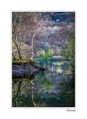 5D4_1496 (Paul Compton PDphotography) Tags: dinorwic snowdon snowdonia welsh hiking landscape llanberis miners photography quarry slate wales walking waterfall water reflections tree nature natural wildlife
