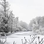Syon Park Gardens Lake In Winter by Simon & His Camera thumbnail