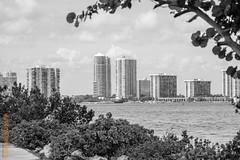 Miami (Edi Bähler) Tags: architektur aussenaufahme bay florida gebäude gebüsch gewässer haus hochhaus lagune landschaft miami pflanze usa unitedstatesofamerica wolkenkratzer architecture building highrise house landscape mochochrome outdoor plant schwarzweiss skyscraper waters fujifilmxpro2 xf55200mmf3548rlmois