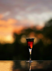 Outdoor still life 1 (Tong Shan 8972) Tags: whiskey glasses bottle drinking nightfall background