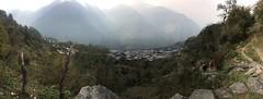 Sikles (Dijup) Tags: sickles annapurna gurung nature nepal