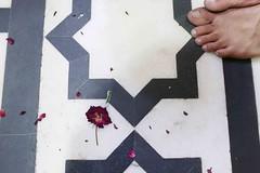 The Rose Garden of Emily Dickinson (Mayank Austen Soofi) Tags: delhi walla rose feet emily dickinson