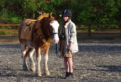 """Safari-so-good"" Pony-club fancy dress compitition - 2nd place - Phoebe. (favmark1) Tags: 2017 365 365challenge jt phoebe ponyclub fancydress whiteleaf stables day96"