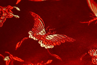 Butterfly on silk