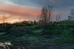the emerald pile (Christian Collins) Tags: canoneos5dmarkiv pile dirtpile green verde spring may midland michigan suelo rain puddle puddles grass weeds sunset mi