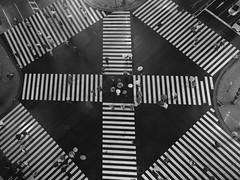 GFX02487 (Zengame) Tags: acros fujifilm fujinon gf gf63mm gf63mmf28rwr gfx gfx50s tokyuplazaginza bw fuji ginza japan monochrome tokyo アクロス フジ フジノン 富士 富士フイルム 日本 東京 東急プラザ銀座 銀座 中央区 東京都 jp
