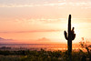 DSC_2643.jpg (RiverBum - MN) Tags: whitetank arizona phoenix mountains