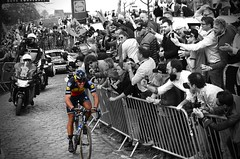 Gilbert for the win in Flanders (Frenk H) Tags: climb deronde cyclisme velo philippe klassieker wielrennen cycling kwaremont vlaanderen ronde flanders belgium tricolore blackandwhite quickstep gilbert