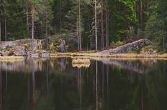 The peacefull spot! (mimmith) Tags: forestwalk forestrecovery treasureofnatur treelover treemagic reflection stone glaskogen värmland sweden