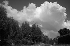 núvols (pepe amestoy) Tags: blackandwhite landscape elcampello spain fujifilm xe1 voigtländer color skopar 421 vm leica m mount