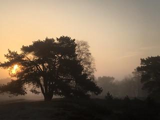 April morning walk (4)