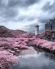 Infrared photography: urban landscape with false color (アキラChacky) Tags: infrared infraredphoto infraredphotography ir irphtography hongkong urban urbanphotograhy landscape light lightroom lake tower cloud flickr see travel traveling traveler camera canon canon600d contrast color colorful city colours clouds central