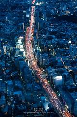 Tokyo Bird Eye View (Pop_narute) Tags: birdeyeview tokyo city night light japan street road expressway urban