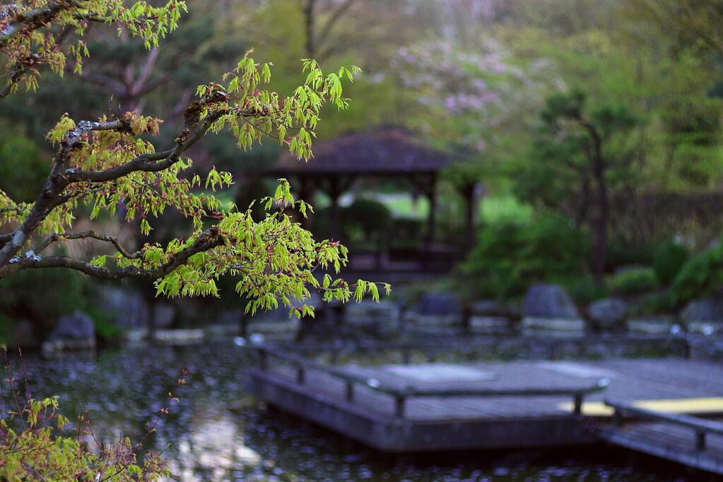 Japanischer Garten München the s best photos of münchen and westpark flickr hive mind
