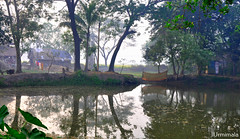 Tranquil (mala singh) Tags: water reflections village rural bengal india trees
