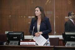 Marcela Aguiñaga - Sesión No.443 del Pleno de la Asamblea Nacional / 11 de abril de 2017 (Asamblea Nacional del Ecuador) Tags: asambleanacional asambleaecuador sesiónno443 pleno plenodelaasamblea plenon443 443 marcelaaguiñaga
