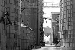 Clark Grain Co. - Explored 4/11/2017 (Jayhawk Explorer) Tags: ipiccy bw blackandwhite monochrome bins grainary grain grainelevator clarkgrainco johnson nebraska ne roadtrip metal agritecture samedaydifferentyear twoyearsagotoday