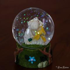 Day 111/365 Woolly headed (Eiona R.) Tags: astarterforten canonefs60mmf28usm snowglobe crystalball