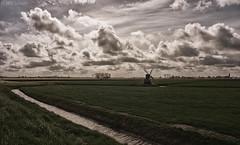 Frisian landscape (Wim Scholte) Tags: fryslân netherlands nikkor24mm nikond750 wimscholte windmills sky cloud landscape frisianlandscape frisian holland sun grass friesland prime prime24mm nikon