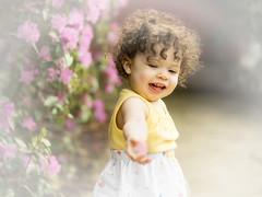 _DSC5918 For You (Charles Bonham) Tags: child toddler curlyhair curls happy girl sonya7r sonyfe2890mmmacrogoss charlesbonhamphotography highkey flowers azalia play outdoor grass bush