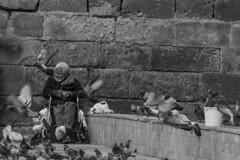 old boy (yasar metin) Tags: smile yalnızlık yaşlılık sevgi sevimli hayat huzur sweet old woman mother light life dark gülümse gülümseme güzel portrait people outdoor boy blackandwhite monochrome