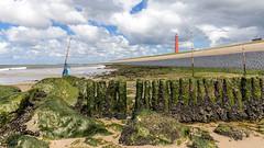 Lange Jaap in Huisduinen (Ramireziblog) Tags: vuurtoren lange jaap huisduinen den helder strand beach sea zee mos mosselen mussels wier lighthouse panorama landscape wallpaper