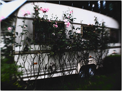 Home Sweet Home 08 (daniel.stark) Tags: home camping campingplatz trailer mobil heim mobilheim