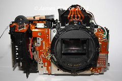 Camera (James E Pearce) Tags: camera metal canon lens photography eos james photographer destruction jim well wires electronics 10d build grip tough pearce built deconstruction screwdriver solid photog internal circuitry mechanisms jamespearce rubberised pearcejamese