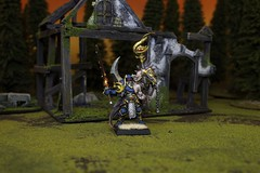 Warriors of Chaos Vilitch the Curseling (Blue Table Painting) Tags: chaos vampire warhammer