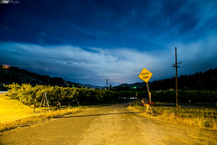 DeadEnd (LiftedExposure) Tags: longexposure nightphotography sky inspiration night clouds canon landscape farm perspective inspired getty treeline deadend appletrees 1minuteexposure canon5dmarkiii
