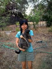 Naomi Carrying Yuba (sjrankin) Tags: family animal cat garden evening oak edited naomi hoses carry carrying oaktrees yuba 10july2013