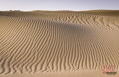 Kuwait - Abestracted Sand shapes (© Saleh AlRashaid / www.Salehphotography.net) Tags: photo sand nikon desert dunes kuwait saleh صحراء تجريد abestract alrashaid d800e