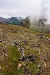 View from Flattop Mountain (Anchorage, Alaska) (Kretzsche93) Tags: from summer usa mountain alps alaska america view flat top august glen anchorage amerika flattop 2013