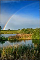 Marfield (steve.christian.1485) Tags: autumn trees sunset nature leaves sunrise landscape pentax yorkshire wetlands northeast k7 masham marfield riverure pentaxk7 sigmadc1850mmexmacro