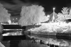 North Point_20130925_032 (falconn67) Tags: longexposure bridge trees bw boston night canon river blackwhite charlesriver infrared zakim zakimbridge 30d 1740l