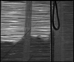 window blinds (manni39) Tags: mamiya film vintage mediumformat kodak vintagecamera blinds 6x7 windowblinds rollfilm rb67 tmx100 sekor mittelformat moyenformat mamiyasekor mamiyasekor90mm38